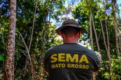 MT anuncia redução média de 31,5% nos alertas de desmatamento nos últimos 6 meses