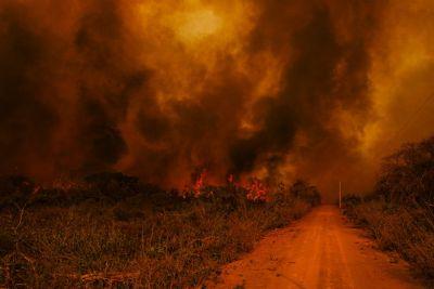 Secretários da Amazônia Legal apresentam planejamento contra incêndios e desmatamento