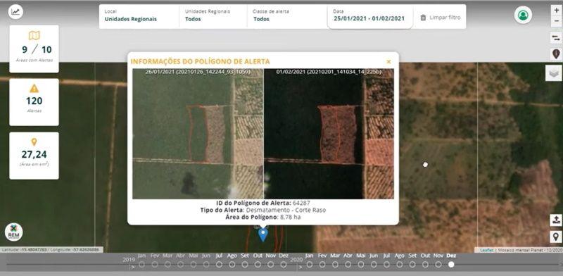 Mato Grosso lança plataforma on-line com alertas de desmatamento; aprenda a usar e fiscalize