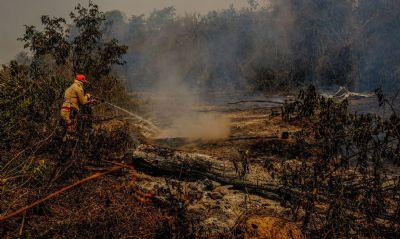 Estudo publicado pela pesquisa Ibope mostra que os brasileiros se preocupam muito com a questão ambiental