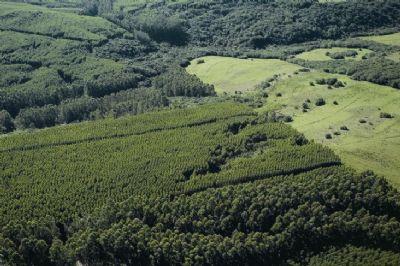Senado aprova projeto que prevê regras para venda de terras a estrangeiros
