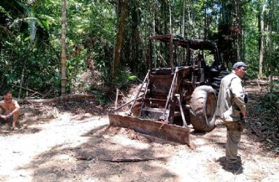 Sema impede extração ilegal de madeira e apreende máquinas em Área de Proteção Integral
