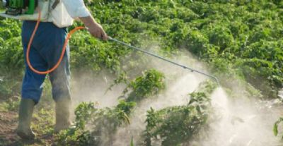 Confira as novas regras para registro de defensivos agrícolas