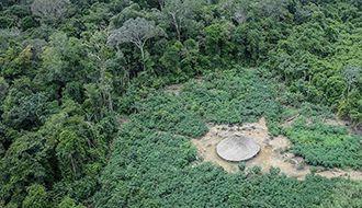 Barroso garante representante dos povos indígenas no plano da PF para isolar invasores