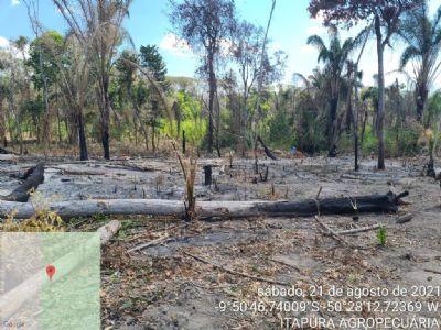 Juiz determina reintegração de posse de fazenda invadida em cidade de Mato Grosso