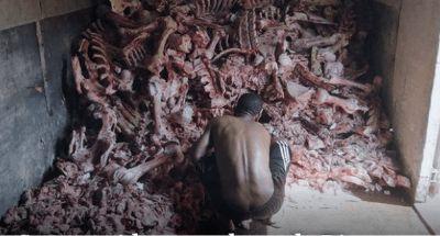 Triste realidade: Sem comida, moradores do Rio aproveitam restos de ossos e carnes de supermercados