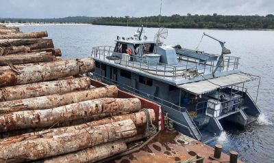 Forças Armadas apreendem balsas com toras de madeira no Pará